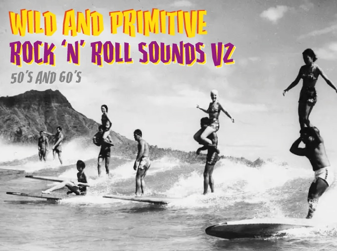 Wild And Primitive Rock And Roll Sounds Vol 2