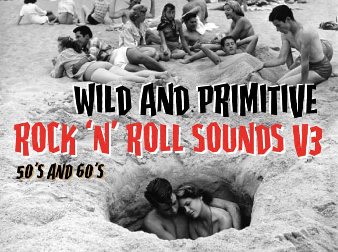 Wild And Primitive Rock And Roll Sounds Vol 3